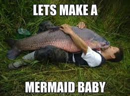 Mermaid Meme - lets make a mermaid baby
