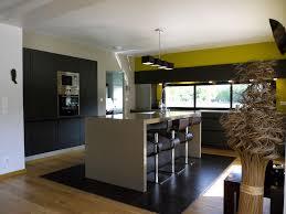 une cuisine ouverte verdoyante inspiration cuisine