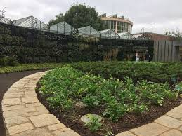 amanda plante u0027s garden guide