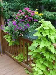 balcony railing planter wood u2014 railing stairs and kitchen design
