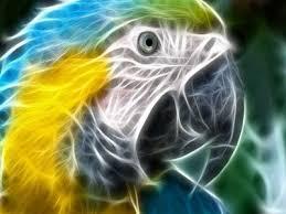 best 25 descargar fondo de pantalla ideas on pinterest