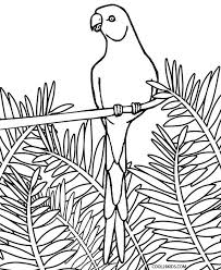 parrot coloring pages parrot coloring pagesfor adults coloring pages kids