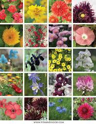 Image Flower Garden by A Cutting Flower Garden Plan