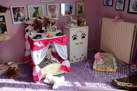 chambre pour chien beautiful chambre pour chien images matkin info matkin info