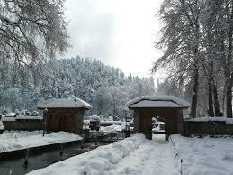 achabal bagh in the winter sarson ke khet