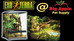exo terra glass terrariums showing all sizes live at global pet