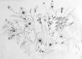 wildflowers jam jar full of flowers quick sketch using fi u2026 flickr