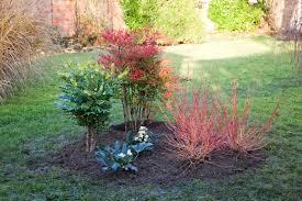 Amenagement Parterre Exterieur by Valoriser Le Jardin En Hiver
