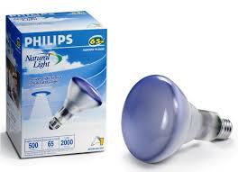 how to paint outdoor flood light bulbs u2014 home landscapings