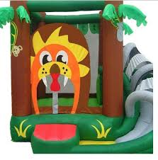 Backyard Bounce 98 Best Water Slides Bounce House Water Sports Images On