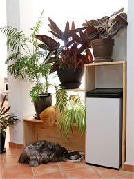 plante pour cuisine diy une étagère en bois sur mesure pour mes plantes purple jumble