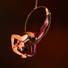 about circus star usa by the aerial classroom