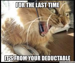 Pet Insurance Meme - cat