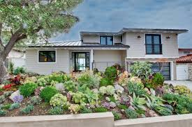 small shrubs for front of house in home eeefdfbead garden trends