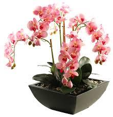Silk Flower Plants - d u0026w silks pink weeping phael orchids in square metal planter