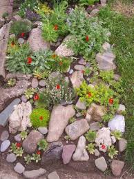 577 best rock garden ideas images on pinterest garden ideas