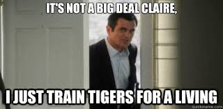 Modern Family Memes - it s not a big deal claire i just train tigers for a living