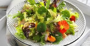 nasturtium flowers green salad with smoked chicken and nasturtium flowers recipe