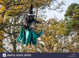 witch on a broomstick stock photos u0026 witch on a broomstick stock
