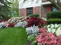 Shady Backyard Ideas Shade Plants In Magnificent Colors For A Magical Garden Hum Ideas