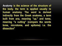 Human Anatomy Words General Anatomy Fierst Year 2016