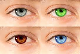 what does your eye color say about you futurederm