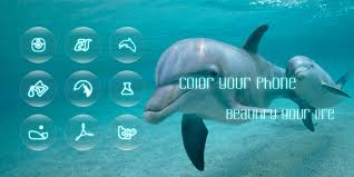 dolphin apk dolphin bay icon pack 1 0 1 apk for android aptoide