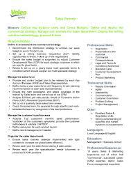 Excellent Sales Valeo Service Sales Director Job Description