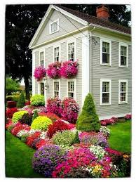 75 best texas garden images on pinterest plants yard ideas and