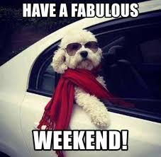 Weekend Meme - have a fabulous weekend meme xyz
