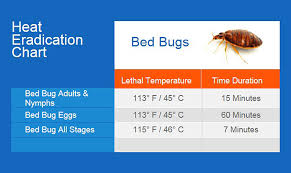 Bed Bug Heat Treatment Cost Estimate by Bed Bugs Bugmaster Pest Kelowna Vernon Penticton