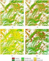 Pandas Map Sensors Free Full Text Bamboo Classification Using Worldview 2