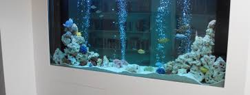 Custom Fish Tanks Bespoke Aquarium Design  Installation UK - Home aquarium designs
