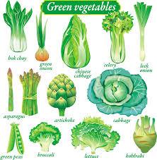 delicate green vegetables vector free vector 4vector