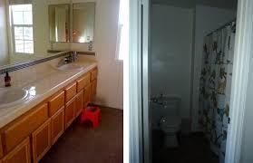 Tiled Vanity Tops Bathroom Fascinating Bathroom Design Ideas With Light Brown Solid