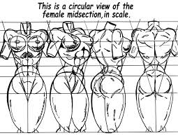 How To Draw Female Anatomy How To Draw Comics