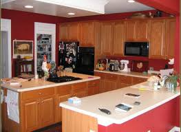 bamboo kitchen cabinets cost satisfactory picture of kitchen faucet handlelovable bamboo