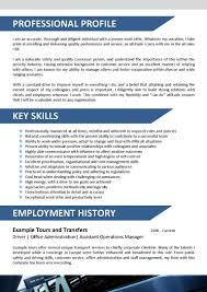 Ramp Agent Job Description Resume by Travel Agent Resumes Virtren Com