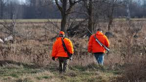 hunting and controlling the exploding deer population in north
