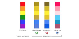 What It Looks Like To Be Color Blind How To Design For Color Blindness U2013 Theuxblog Com