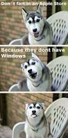 best 25 humor ideas on pinterest lol funny kid memes and funny