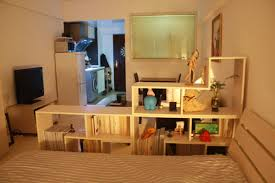 cosy very small apartment design with additional small home