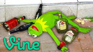 Kermit The Frog Meme - 13 drunk kermit the frog memes that never made it to vine youtube
