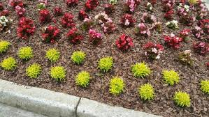 Mailbox Flower Bed Border Plants U2013 Savingourboys Info