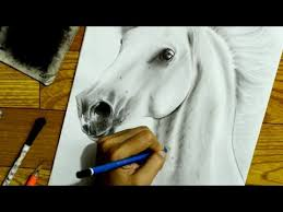 Are Horses Color Blind How I Draw A Horse Time Lapse Drawing Youtube