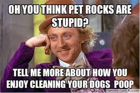 Pet Rock Meme - rock