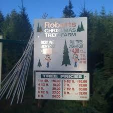 christmas tree prices christmas tree farm 20 reviews christmas trees 5645
