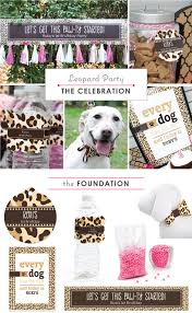 leopard print party supplies search results for owl baby shower big dot of happiness