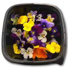 Edible Flowers Edible Flower Viola Mix Herbs Unlimited