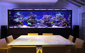 Custom Aquarium Location In Home Aquarium Architecture - Home aquarium designs